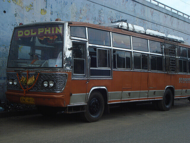 photo gallery dolphin tours travels online bus ticket bookings travel services. Black Bedroom Furniture Sets. Home Design Ideas